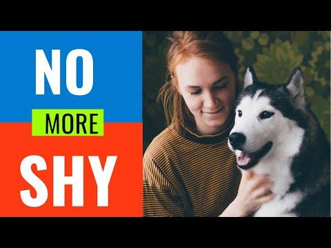 Training a fearful, shy and aggressive dog