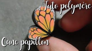[♥✿ Tuto polymère : cane papillon ✿♥]