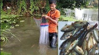Natural Fish Catching in Bangladesh || Fish Hunting With Karen net/Current jal in the village system