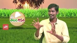 అల్లల్ల నేరాడి నేరియాలో.. Allalla Neradi Neriyalo Song By Folk Singer Rela Nagaraju | YOYO TV