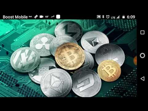 What Is Cryptocurrency Backed By