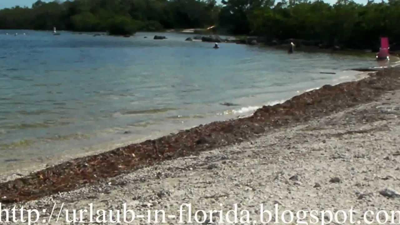 Cannon Beach John Pennekamp C Reef State Park Strand Florida Rollstuhl Barrierefrei Usa You