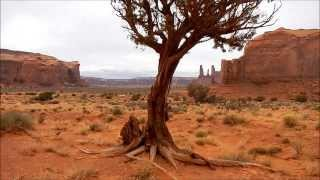 Monument Valley, land of the Dine (Navajo) Nation, feral horses, dinosaur tracks.