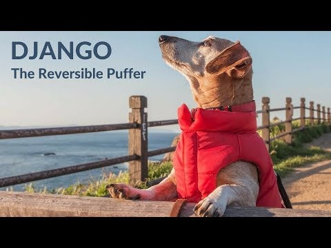 DJANGO - The Reversible Puffer Dog Coat - Lava Red