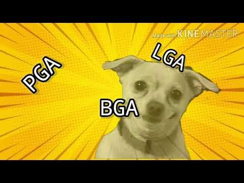 ¿Que es pga, bga y lga.?