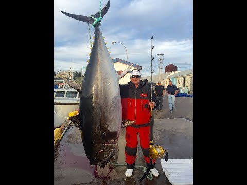 2017 – Episode 5–  Prince Edward Island, Canada: Giant Bluefin Tuna