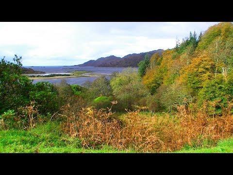 Moidart - Autumn colours - Scotland