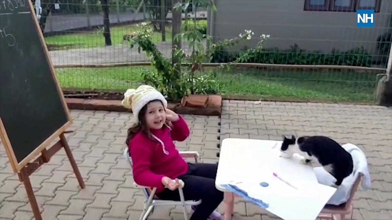 Menina de seis anos brinca de dar aula para gatinha adotada na quarentena