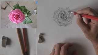 Как нарисовать розу карандашом. Бесплатный видео мастер-класс(Денис Никонов показывает в бесплатном видео-уроке как поэтапно нарисовать розу карандашом. Запись на маст..., 2014-09-29T09:33:57.000Z)