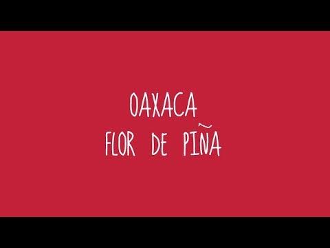 Descargar MP3 Oaxaca - Flor de Piña (Audio)