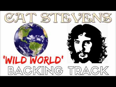 Cat Stevens - 'Wild World' [Backing Track] Instrumental