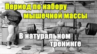 ЦИКЛ ПО НАБОРУ МЫШЕЧНОЙ МАССЫ в натуральном тренинге.