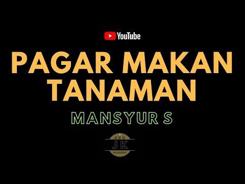 MANSYUR S - PAGAR MAKAN TANAMAN _ KARAOKE DANGDUT _ TANPA VOKAL _ LIRIK