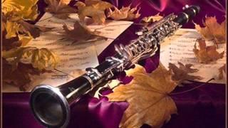 """J.Stamitz; """"Concerto per Clarinetto e Orchestra""""in Sib Maggiore (Solista L.Lettiero)"""
