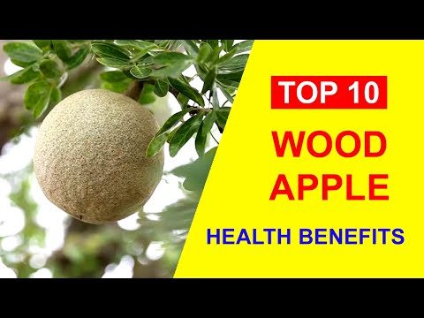 Wood Apple – Top 10 Health Benefits of Wood Apple and Bael Fruits Nutrition