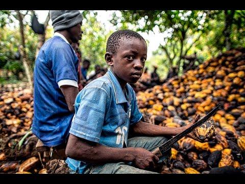 the dark side of chocolate documentary | chocolate documentary | chocolate child slavery documentary