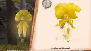 Spiderwick~ Catching A Bellflower Sprite