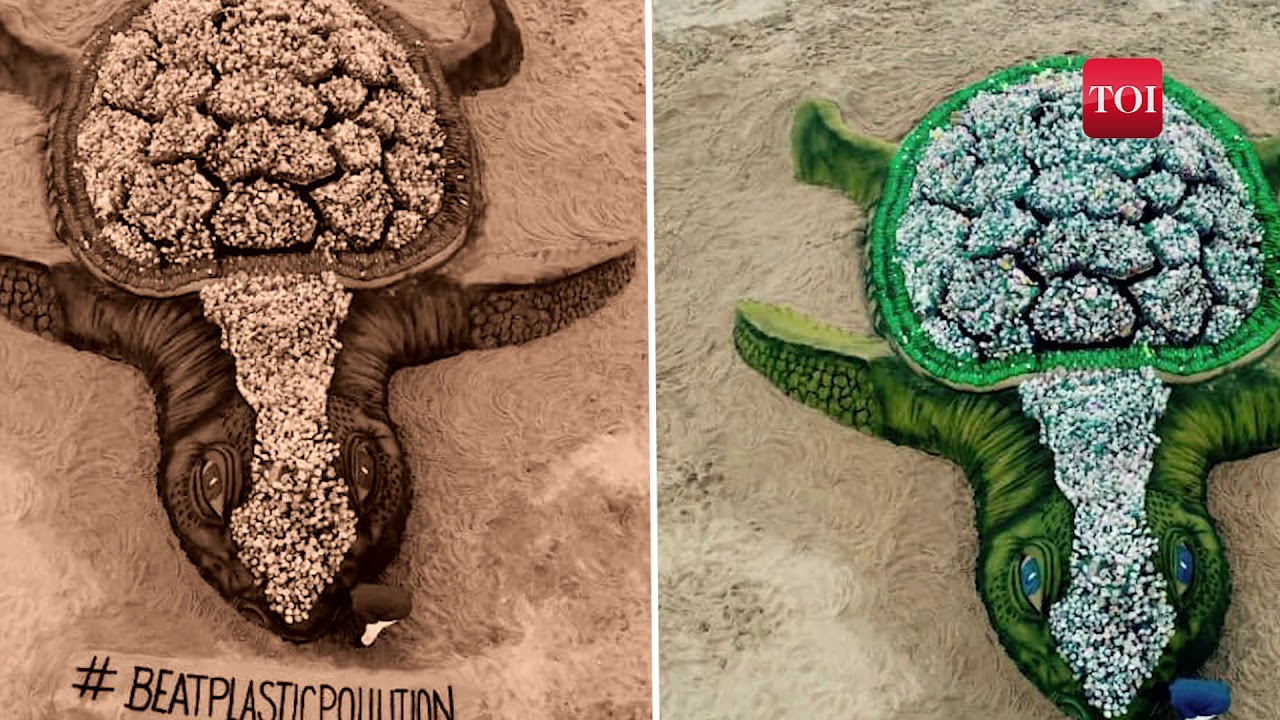 Sand artist creates world's biggest sand turtle with plastic bottles