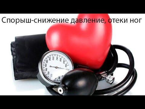 Спорыш - снижение давления, отеки ног, камни в почках. Лечебные свойства и противопоказания