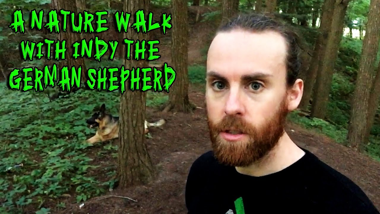 how to make a walk through become video
