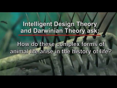 Stephen Meyer Interview on the John Ankerberg Show - Precambrian Era, Neo-Darwinism, ID