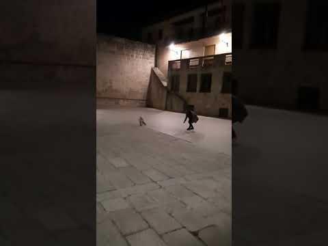 El zorro que por las noches visita a los durolenses
