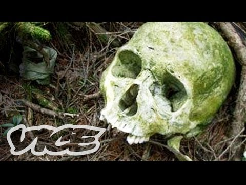 Suicide Forest In Japan (Full Documentary)