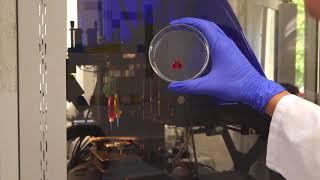 3D-биопринтер Fabion