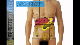 DIVISIÓN TOPOGRÁFICA DE ABDOMEN.avi
