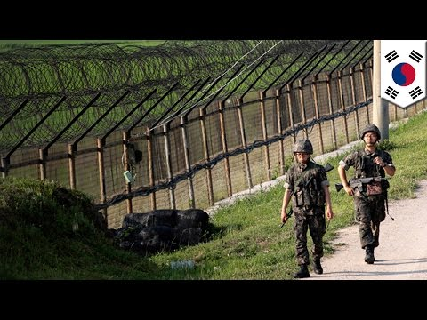 DMZ standoff: North Korea and South Korean troops exchange gunfire at the border