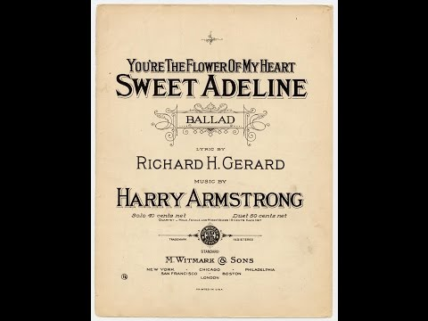 You're the Flower of My Heart, Sweet Adeline (1903)