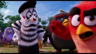 Angry birds the movie The birds destroy pigs town