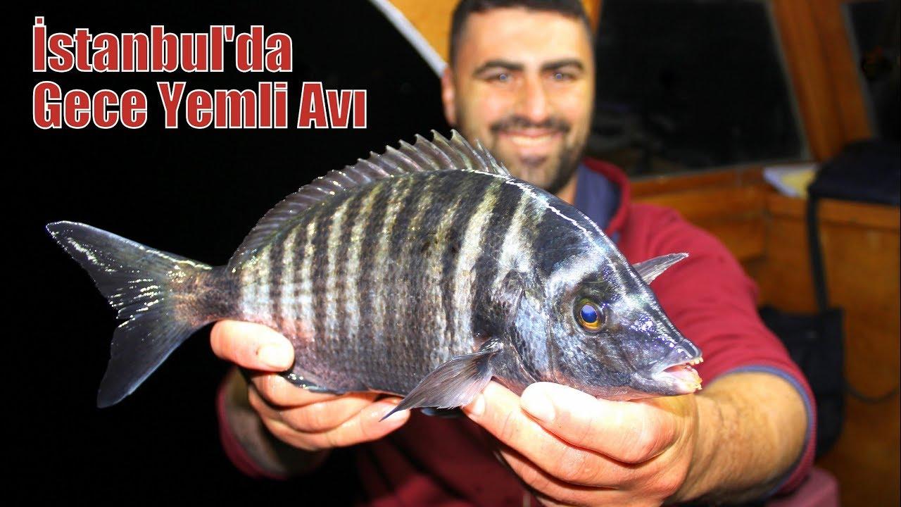 İstanbul'da Dev Eşkina ve Karagöz Avı / Harika Balıklar Yakaladık !!