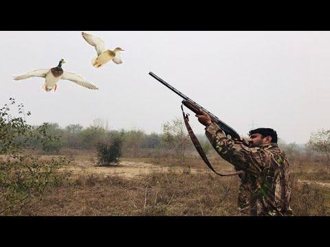Duck Hunting   Waterfowl Hunting in Pakistan Season 2021-22