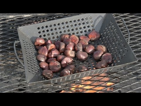 From the Pit: How to Roast Chestnuts on an Open Fire