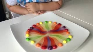 Kids science experiment with Skittles