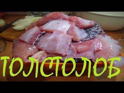 Маринованная рыба ТОЛСТОЛОБИК, карп, скумбрия, сельдь !!! СЕМЕЙНЫЙ РЕЦЕПТ ПРИГОТОВЛЕНИЯ!!!