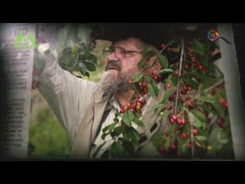Грядка Хольцера (полная версия) / Sepp Holzer's Permaculture