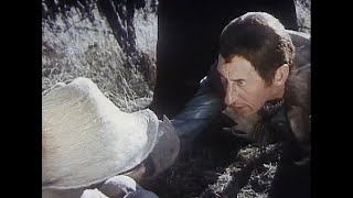 Про Красную Шапочку, 1977. Макс-карманник, 1962. Руки вверх!, 1981.