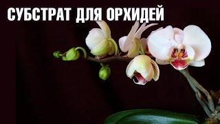 Субстрат для Орхидеи - какой лучше выбрать?(Какой субстрат лучше выбрать для орхидеи? Подробнее о Орхидеях и уходе за ними смотрите в видео: ✦ Уход..., 2016-11-11T11:49:41.000Z)