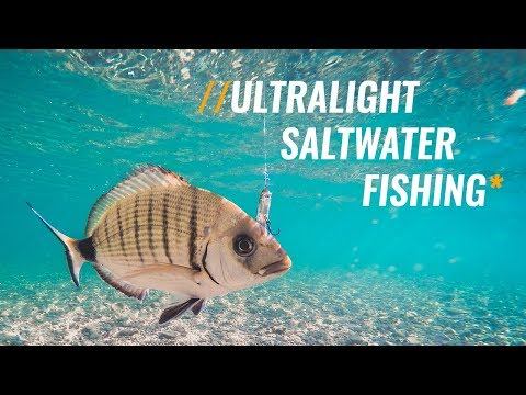 Ultralight Saltwater Fishing