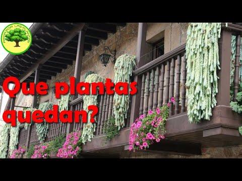 Especial balcones y terrazas youtube for Especial terrazas