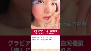 グラビアアイドル・白河優菜「猫」になってじゃれる https://www.news-p...