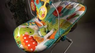 Fisher-Price Animal Party Bouncer Review - Quick Overview