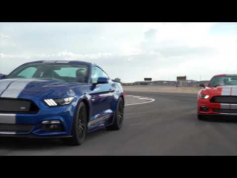 Shelby Mustang Video (Las Vegas)