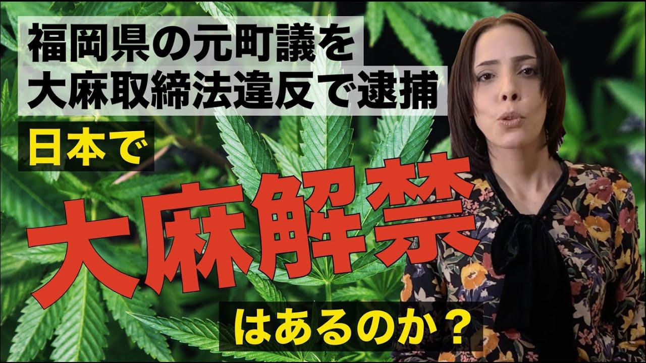 福岡 大麻 逮捕