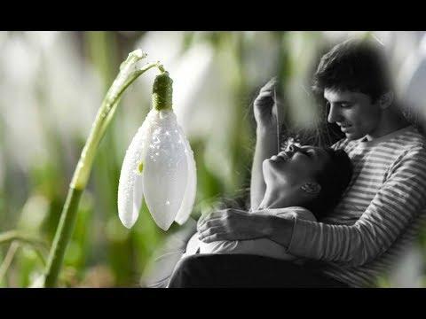 Вопрос: Как пахнет подснежник ранней весной?