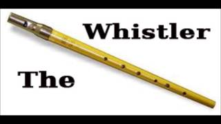 Dearg Doom Chorus (The Horslips) - D Whistle Cover