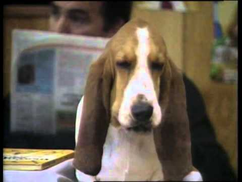 Friday Night Surprise 1989 Oscar The Talking Dog