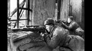 Негласные правила снайперов. Кого не трогали на 2-й Мировой Войне?